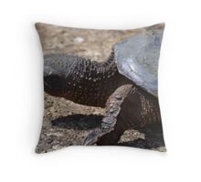 Moving At The Speed Of Turtle. Throw Pillow