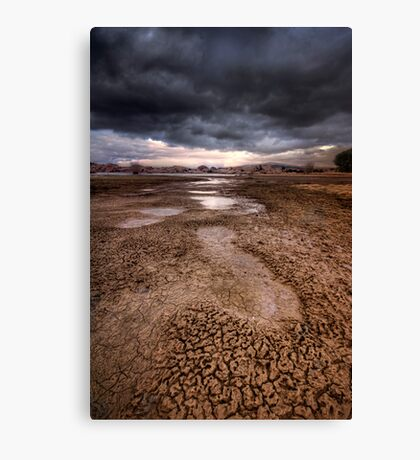 Following Storm Canvas Print