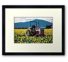 Skagit Valley Farming Framed Print