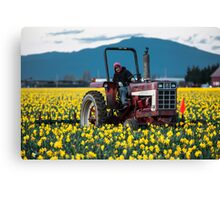 Skagit Valley Farming Canvas Print