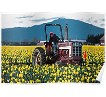 Skagit Valley Farming Poster