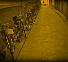 Old Fashioned Bikes by fred113