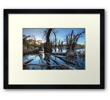 They Wait Framed Print