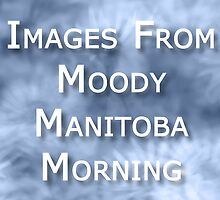 Moody Manitoba Morning banner by John Poon