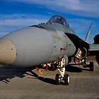 F/A-18 Hornet, A21-53, 3 Squadron, RAAF Williamtown by Tim Pruyn