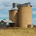 Grain Silos at Springdale by Tim Pruyn