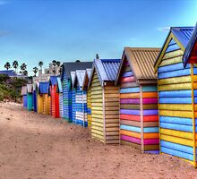 Bathing Boxes by Leonie Morris