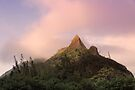 Sunrise At Nu'uanu Pali Lookout by Alex Preiss