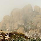 Mt Buffalo - The Coral by D-GaP