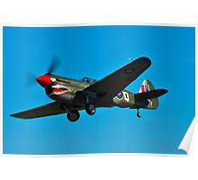 P-40N Kittyhawk Poster