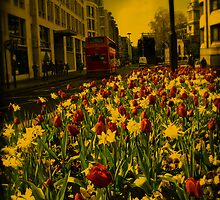 London in Spring Time by fred113