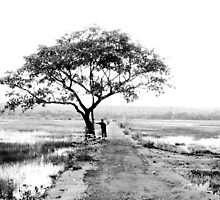 i walk a lonely road by Ashwin Shukla