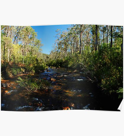 Greave's Creek, Grose Valley, NSW. Poster