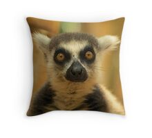 Maki Catta / Ring Tailed Lemur photograph printed on throw pillows, posters or bag.  Throw Pillow