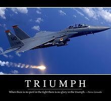 Triumph: Inspirational Quote and Motivational Poster by StocktrekImages