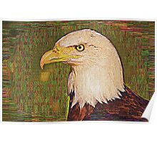 Bald Eagle Embroidered Poster
