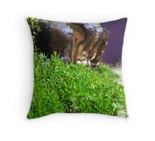 17th April 2012 Throw Pillow
