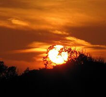 Flaming Orange Fireball Sunset by TedT