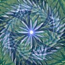 Spirale by Margherita Bientinesi