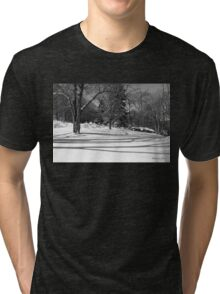 That Cold Winter Sun ~ On Snow Tri-blend T-Shirt