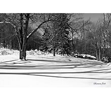 That Cold Winter Sun ~ On Snow Photographic Print