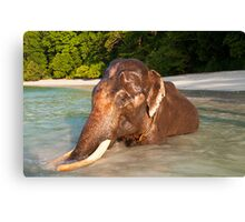 Rajan Revisited Canvas Print