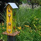 Butterfly House by John Schneider
