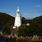 Hell's Gate Lighthouse, Tasmania by Sue Ballyn