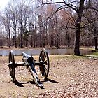 Cannon at Shiloh Battlefield by Paula Betz