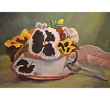 Tin Cup Pansy Tea Photographic Print