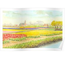TULIP FIELDS IN VOGELENZANG - AQUAREL Poster