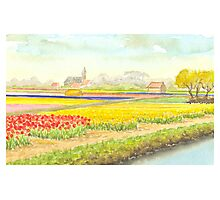 TULIP FIELDS IN VOGELENZANG - AQUAREL Photographic Print