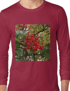 Red Rowan Berries in the Rain Long Sleeve T-Shirt