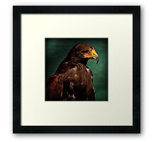 The Pride Framed Print