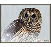 Hoot-i-ful Photographic Print
