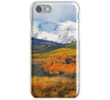 Fall colors in San Juan Mountains iPhone Case/Skin