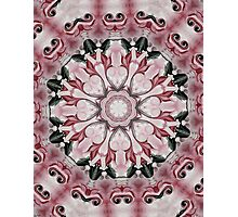 Rococo red Rosette- R102 Photographic Print