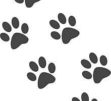 Paw Prints by Allison Rochon