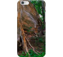 Bricks and Tree Roots iPhone Case/Skin