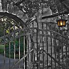 Through the gate by Jamie  Armbruster