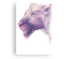 Multicoloured Lioness  Canvas Print