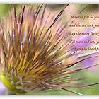 Song Lyrics II by Betsy  Seeton