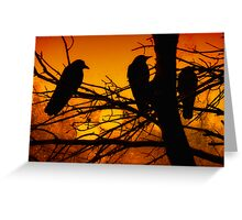 The Sunset Committee Greeting Card