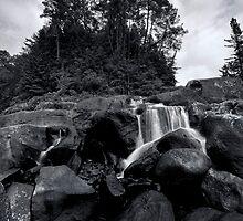 Mclarens pine ridge by Ken Wright