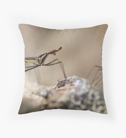 Conquistador of Nothingness Throw Pillow