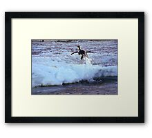Emperor Penguin 'Flying' Home Framed Print
