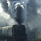 Bluebell Railway - UK by lutontown