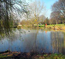 Lake at Glastonbury Abbey  by alanf1