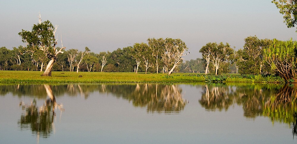 Yellow Water Billabong  by Jenny Dean