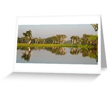 Yellow Water Billabong  Greeting Card